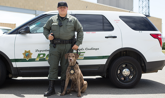 dating a law enforcement officer Us capitol police - officers opening date: 1/1 this position is covered under law enforcement retirement full time police officer - florida opening date.
